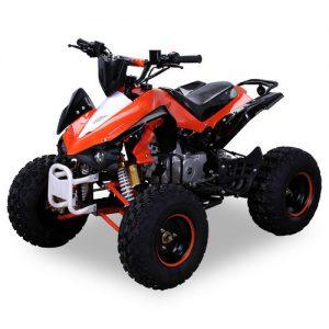 Kinder Quad X12 Benzin 125ccm