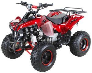 Kinder Quad X10 125 ccm